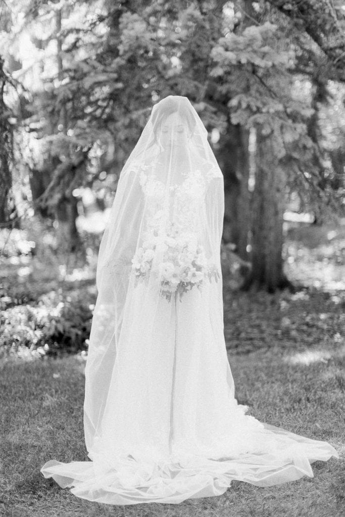 A Norland Estate Wedding Calgary wedding photographer the bride portraits veil